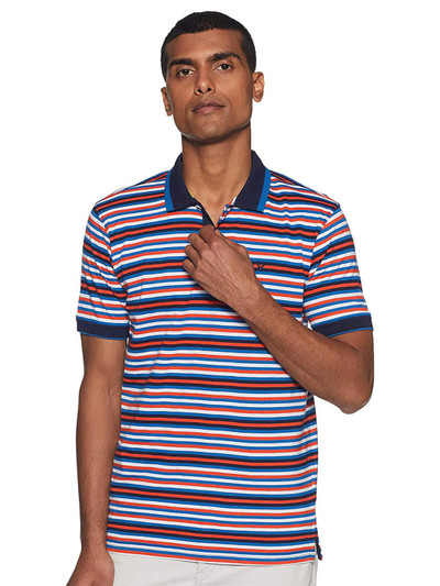 Allen Solly white and blue stripe t-shirt
