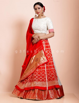 Red bandhej wedding half n half lehenga choli